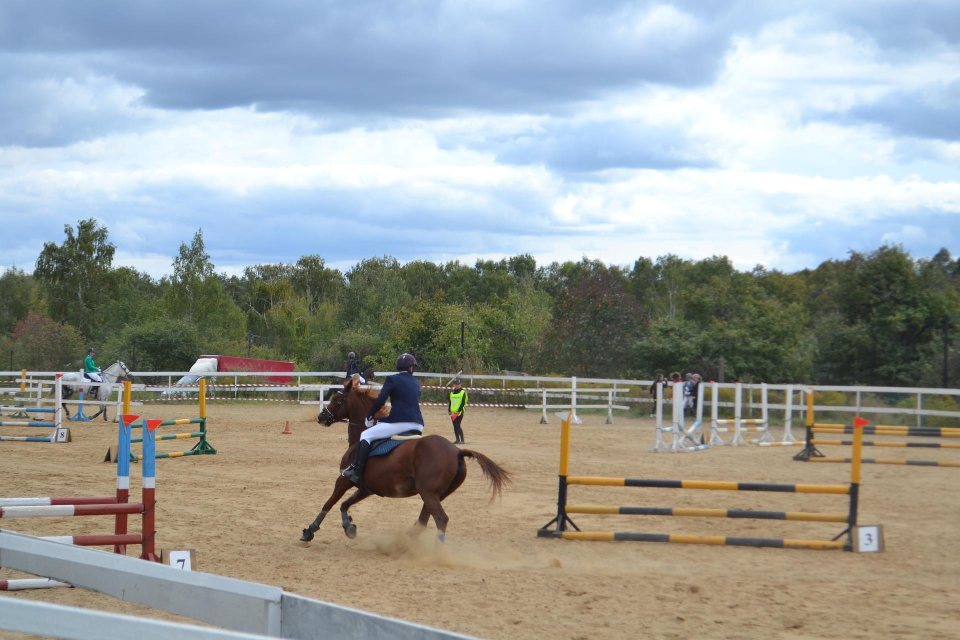 В Новомосковске прошли соревнования по конкуру
